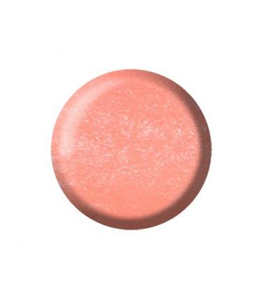 POLVERE ACRILICA COLORATA - CP09 - 10 ml